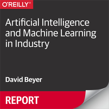 Artificial Intelligence and Machine Learning in Industry