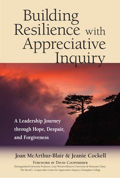 Building Resilience with Appreciative InquiryÂ