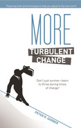 Cover of More Turbulent Change