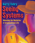 Cover of Seeing Systems, 2nd Edition