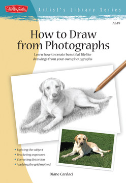 How to Draw from Photographs