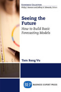 Book cover for Seeing the Future