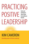 Cover of Practicing Positive Leadership