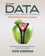 Book cover for Data Modeling Made Simple with ER/Studio Data Architect: Adapting to Agile Data Modeling in a Big Data World