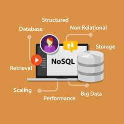 An Overview of NoSQL Databases