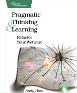 Cover of Pragmatic Thinking and Learning