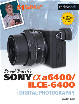 David Busch's Sony Alpha a6400/ILCE-6400 Guide to Digital Photography