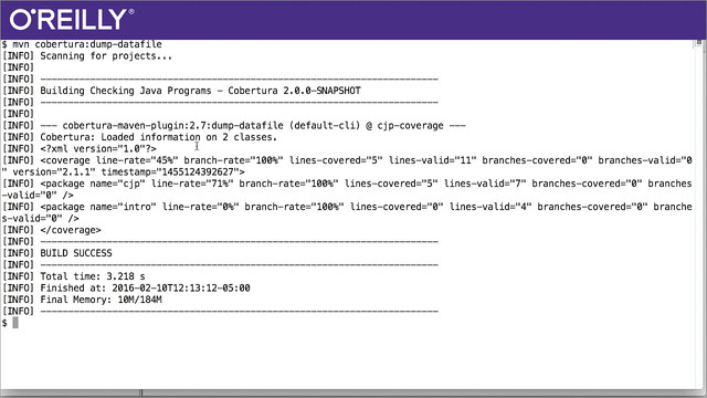 Java Testing for Developers