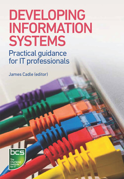 Developing Information Systems: Practical guidance for IT professionals