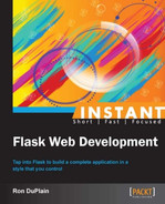 Cover of Instant Flask Web Development