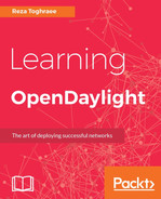 Cover of Learning OpenDaylight