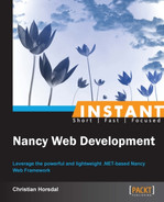 Cover of Instant Nancy Web Development