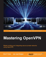 Cover of Mastering OpenVPN