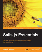 Cover of Sails.js Essentials