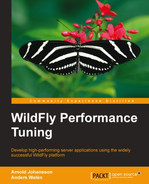 Cover of WildFly Performance Tuning