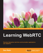 Book cover for Learning WebRTC
