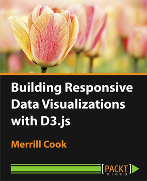 Building Responsive Data Visualizations with D3.js
