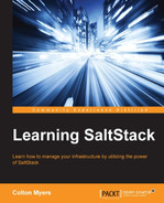 Cover of Learning SaltStack