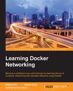 Cover of Learning Docker Networking