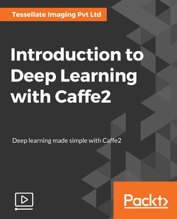 Introduction to Deep Learning with Caffe2
