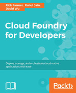 Cover of Cloud Foundry for Developers