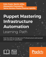 Cover of Puppet: Mastering Infrastructure Automation