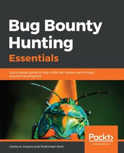Bug Bounty Hunting Essentials