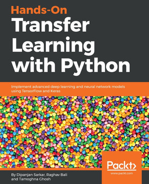 Hands-On Transfer Learning with Python [Book]