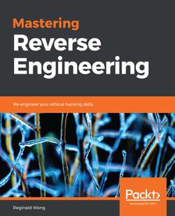 Mastering Reverse Engineering