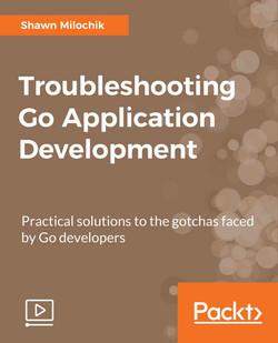 Troubleshooting Go Application Development