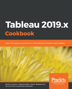 Tableau 2019.x Cookbook