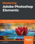 Mastering Adobe Photoshop Elements