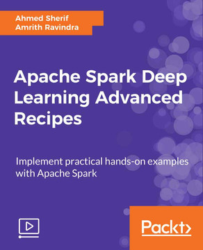 Apache Spark Deep Learning Advanced Recipes