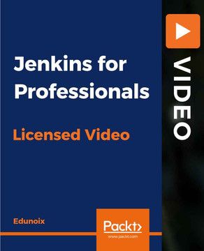 Jenkins for Professionals