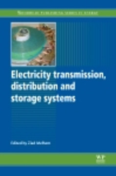 Electricity Transmission, Distribution and Storage Systems