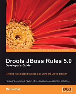 Drools JBoss Rules 5.0 Developer's Guide