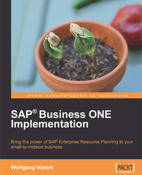 SAP® Business ONE Implementation