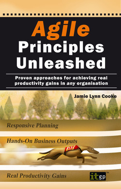 Agile Principles Unleashed: Proven approaches for achieving real productivity gains in any organisation