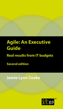 Agile An Executive Guide