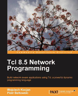 Tcl 8.5 Network Programming