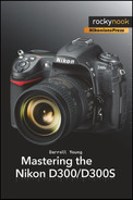 Cover image for Mastering the Nikon D300/D300S