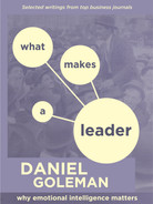 Cover of What Makes a Leader: Why Emotional Intelligence Matters