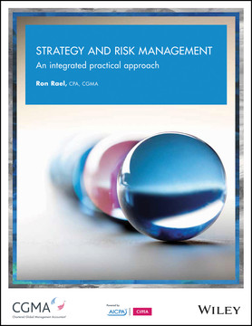 Strategy and Risk Management