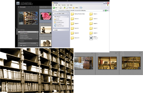 Creating Backups and Exporting Photos