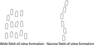 Wide versus narrow field-of-view flock formations