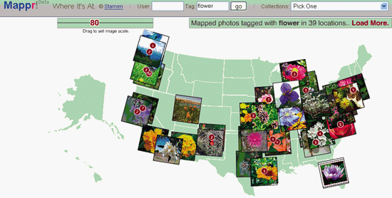 Flickr's flowers on Mappr's map