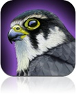 Best App for Birdwatching
