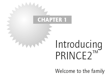 Introducing PRINCE2