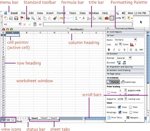 Look at Excel (Mac OS) - Creating Spreadsheets and Charts in