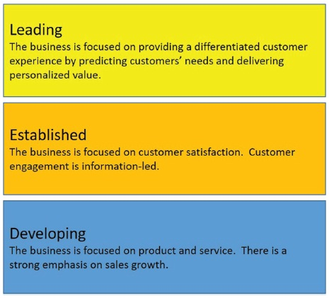 "The figure shows three rectangular boxes representing the first EY Driver of Growth that is ""Customer."" Box 1: Leading represents ""The business is focused on providing a differentiated customer experience by predicting customers' needs and delivering personalized value."" Box 2: Established represents ""The business is focused on customer satisfaction. Customer engagement is information-led."" Box 3: Developing represents ""The business is focused on product and services. There is a strong emphasis on sales growth."""